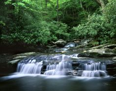 Visit these five must-see Smoky Mountain sights that are exceptional and true highlights of the Gatlinburg region.