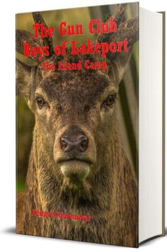 The Gun Club Boys of Lakeport (Illustrated) by Edward Stratemeyer | NOOK Book (eBook) | Barnes & Noble®