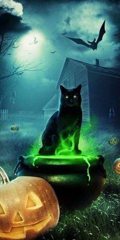 Image Halloween, Halloween Artwork, Halloween Silhouettes, Halloween Scene, Halloween Backgrounds, Halloween Pictures, Halloween Wallpaper, Spooky Halloween, Happy Halloween