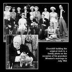 Sir Winston Churchill's cats, Jock the cat