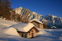 Malga Stain  #alpi #vallecamonica #valcamonica #brescia #montagna #adamellon #edolo