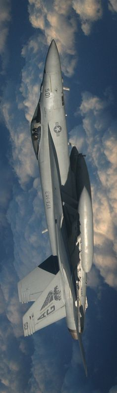 F/A-18 Hornet - as been the choice of fighter for the precision maneuvering team  BLUE ANGELS of the US NAVY