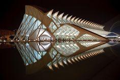Science Museum in Valencia by Santiago Calatrava architects. Futuristic Architecture, Beautiful Architecture, Contemporary Architecture, Art And Architecture, Architecture Details, Chinese Architecture, Unusual Buildings, Interesting Buildings, Amazing Buildings