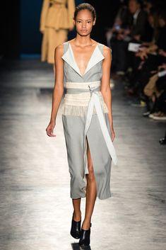 Altuzarra Fall 2014 Ready-to-Wear Fashion Show - Malaika Firth