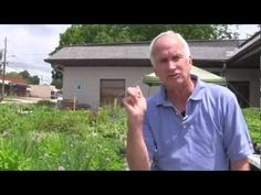 Video on using Fresh Herb Plants To Improve Nutrition and Improve Diet To Avoid Harmful Foods Hindering Your Health.