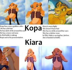 Back when we were at the end of the special edition of 'The Lion King' in theaters, everyone thinks that the cub Rafiki was carrying was Kiara. But they are all wrong!   Kiara is only shown on 'The Lion King 2: Simba's Pride'.  You should also read this image of the cubs and you'll know what I mean.