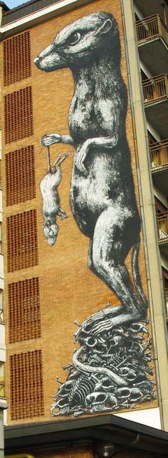 Street Artist: Roa in Turin