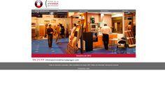 Diseño y Maquetación, Indexación, Flash, HTML5 @zesis