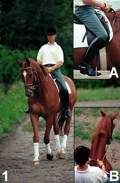 Learn to Leg-Yield with Volker Brommann | Practical Horseman