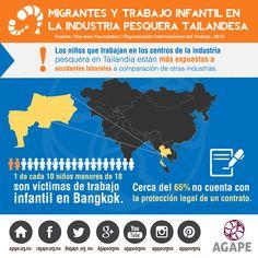 MIGRANTES Y TRABAJO INFANTIL EN LA INDUSTRIA PESQUERA TAILANDESA (1) #HazConciencia #HumanTrafficking #AGAPE #InfografiaAGAPE  https://instagram.com/p/8iWHHOuWnT/