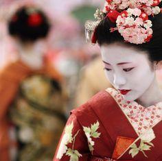 I wish I could be your geisha, pleasing all your wishes… lunarlunatic: girl : maiko (apprentice geisha) umeraku (by momoyama) Geisha Kunst, Geisha Art, Japanese Beauty, Asian Beauty, Japanese Kimono, Japanese Art, Japanese Style, Geisha Japan, Kyoto Japan
