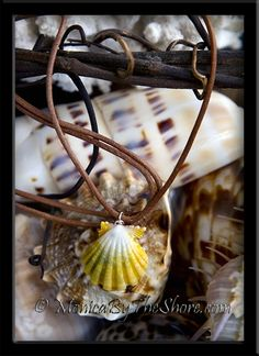 Hawaiian Sunrise Shell Adjustable Natural Leather Cord Necklace