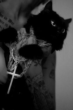 Black #cat