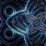 Cosmic Flower Unfolding: An Abstract Metaphysical Animation by Ben Ridgway. http://www.thisiscolossal.com/2014/08/cosmic-flowers-unfolding-an-abstract-metaphysical-animation-by-ben-ridgway/