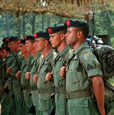 The Green Berets Us Special Forces, Rare Historical Photos, Military Drawings, Army Infantry, Green Beret, Star Wars Images, Military Pictures, Vietnam War, Good Movies