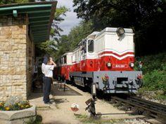 Children's Railway Budapest.