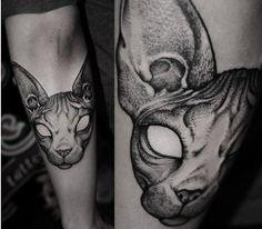 Sphynx Cat -> Robert A Borbas/ HUNGARY