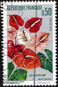 France.  ANTHURIUM (MARTINIQUE).  Scott 1356 A601, Issued 1973 Jan 20, Photo., .50. /ldb.