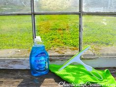 •Dawn Dish Detergent   •Small Bowl or Bucket   •Scrubby Pads   •Absorbent Cloths   •Squeegee   •Dirty Windows