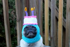 Happy Happy  Birthday Cake Dog Hat / Made To Order by Sweethoots, $24.00