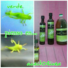 #Verde que te #quiero verde. #aceite de #oliva de #primera #presión en #frío fe @aceitolivex  #extremadura