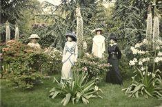 Autochrome 1910 Les jardins Kahn à Boulogne-Billancourt