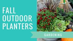 How To Paint A Front Door Without Removing It - House of Hawthornes Outdoor Christmas Planters, Christmas Porch, Outdoor Planters, Outdoor Christmas Decorations, Vintage Christmas, Log Planter, Outdoor Decor, Winter Planter, Miniature Fairy Gardens