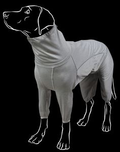 The Body Warmer overall is a multi-purpose product suitable for an active dog's muscle care, and for providing extra warmth under a waterproof jacket or overall. It is also ideal for ageing dogs, and dogs undergoing rehabilitation. The foil material on