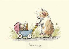 Piggy Day Trip