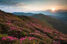 Imagini pentru apus de soare primavara