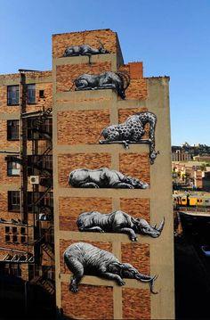 Street art in Johannesburg by ROA #ivoryforelephants #stoppoaching #elephants for #ivory ! #elephantart #art