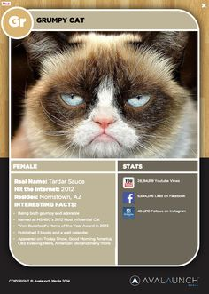 Grumpy Cat is one of the famous Internet Cats featured on the PURRiodic Table of Internet Cats.