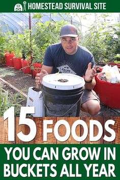 15 Foods You Can Grow In Buckets Year-Round - Homestead Survival Site Bucket Gardening, Gardening Tips, Organic Gardening, Indoor Gardening, Growing Veggies, Growing Plants, Home Vegetable Garden, Container Gardening Vegetables, Homestead Survival