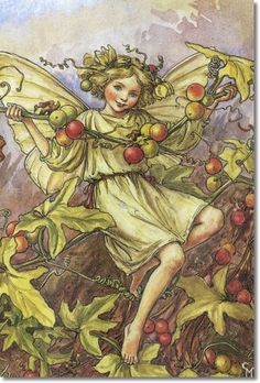 Cicely Mary Barker - Flower Fairies of the Autumn - The White Bryony Fairy Painting