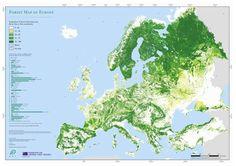 Wunderschöne Karte europäischer Wälder. 73% von Finnland sind bewaldet, 70% von Schweden.
