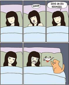 Los gatos son criaturas extremadamente extrañas. Es inútil tratar de entenderlos, por lo que solo queda aceptarlos y amar con todas sus rarezas.