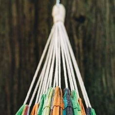 hammock  hammocks  hammocking it u0027s the start of another week let new adventures begin      rh   pinterest