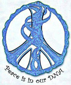 Peace DNA was definitely in Ashlie's body!