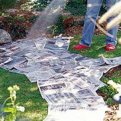 This works. Place newspaper (non-glossy) under a mulch in flower beds, even when starting a new vegetable garden bed. Deters weeds or grass and breaks down over time into the soil. Garden Beds, Lawn And Garden, Garden Art, Garden Junk, Diy Garden, Garden Paths, Rain Garden Design, Brick Garden Edging, Rockery Garden