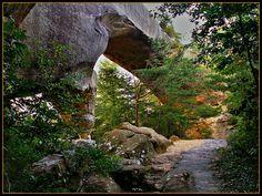 Daniel Boone National Forest, Kentucky