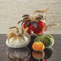 Autumnal Velvet Pumpkins                                                       …