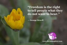 The freedom of speech enables citizens to speak out against wrong use of power and any event or action that they do not agree, no matter. Freedom Quotes, The Freedom, Freedom Of Speech, Mens Summer Wedding Suits, Inspirational Articles, George Orwell, Read More, To Tell, Thoughts