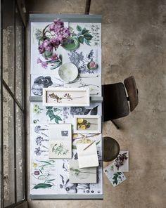Floral Desktop inspiration//