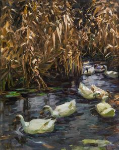 Eight ducks in the autumn reed, Alexander Koester. Germany (1864 - 1932)