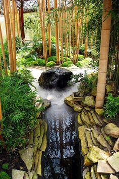 Bamboo Garden | in the bamboo garden by dittma_d