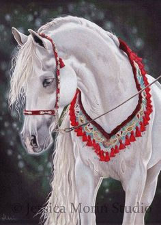 White Arabian horse with red halter and neck collar. Colored pencil horse drawing by Jessica Morin. Please also visit www.JustForYouPropheticArt.com for more colorful art you might like to pin. Thanks for looking!