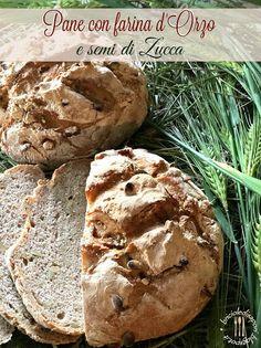 Briciole di Sapori: Pane con farina d'orzo e semi di zucca. Impastare ...