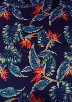 Tropical. pattern