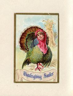 Creepy Vintage Thanksgiving Postcard Girl Head on Turkey Thanksgiving Smiles by Edward Nash Postmark 1912 Sheridan MI Mary Dell ~ 4899Pa