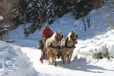 Romantic sleigh rides